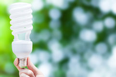 Energy saving concept, Woman hand holding light bulb on green nature background Royalty Free Stock Image