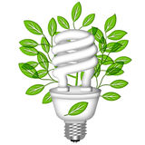 Energy Saving Eco Lightbulb with Green Leaves Stock Photo