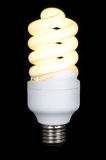 Energy saving fluorescent lamp Stock Photography