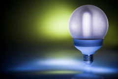 Energy saving fluorescent light bulb Royalty Free Stock Photos