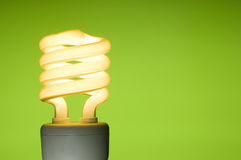Energy saving fluorescent light bulb. On green background. Space for text Stock Photography