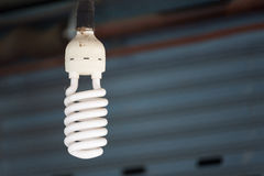 Energy saving fluorescent light bulb for home decoration. Royalty Free Stock Image