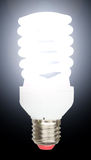 Energy saving fluorescent lightbulb Royalty Free Stock Photos