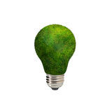 Energy saving green eco bulb on white background Stock Photography