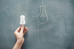 Energy saving. Human hand holding energy saving lamp at the blackboard Stock Photography