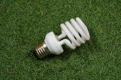 Energy saving lamp. On conifer needles background Royalty Free Stock Photo