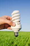 Energy saving lamp Royalty Free Stock Image