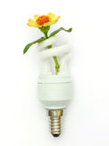 Energy saving lamp. Isolated on white background Royalty Free Stock Photo