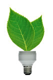 Energy saving lamp. With green seeding stock photos
