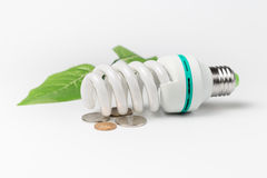 Energy saving lamp coins and green leaves Royalty Free Stock Images
