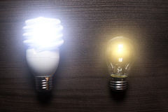 Energy saving lamp and glow lamp switched on. Concept Royalty Free Stock Photography