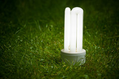 Energy saving lamp on the grass Royalty Free Stock Photography