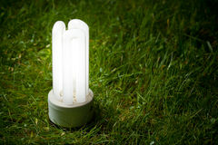 Energy saving lamp on the grass Stock Images
