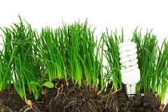 Energy-saving lamp, grass and earth, concept Royalty Free Stock Photos