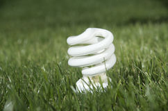 Energy saving lamp on green grass Royalty Free Stock Images