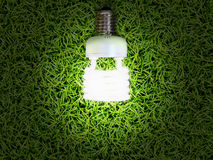 Energy-saving lamp in green grass background Royalty Free Stock Images