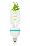 Energy saving lamp isolated on the white Royalty Free Stock Images