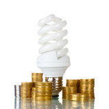 Energy saving lamp and money Royalty Free Stock Photo