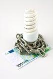 Energy saving lamp and money Royalty Free Stock Image