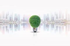 Energy saving lamp of tree Stock Photo