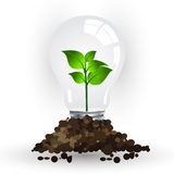 Energy saving lamp vector Royalty Free Stock Photography
