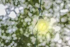 Energy saving lamps with white background bokeh natural. Royalty Free Stock Images