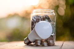 Energy saving LED BULB ECO With the environment.  royalty free stock photos