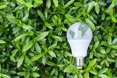 Energy saving LED Bulb with lighting in the green nature backgr. Energy saving LED Bulb with lighting in the green stock photos