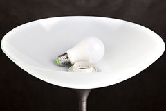 Energy-saving LED light bulb is in the lampshade Floor lamp. Royalty Free Stock Photo