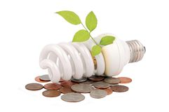 Energy saving light bulb. And money and plant on white Royalty Free Stock Photography