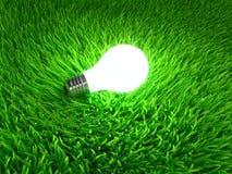 Energy saving light bulb Stock Image