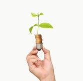 Energy saving light bulb, Creative light bulb idea in hand Stock Photography