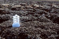 Energy saving light bulb. On dark desert Stock Photography