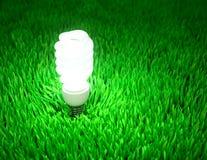 Energy saving light bulb Royalty Free Stock Photos