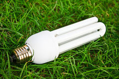 Energy saving light bulb in grass Royalty Free Stock Photos