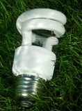 Energy saving light bulb on green grass Royalty Free Stock Image
