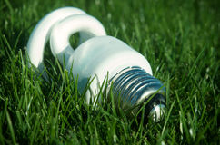 Energy saving light bulb on green grass Royalty Free Stock Photos