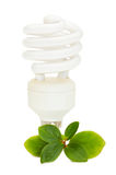 Energy saving light bulb on green leaves Stock Image