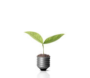 Energy saving light bulb. Ideas, energy saving light bulb stock images