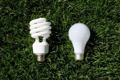 Energy Saving Light Bulb and Incandescent Bulb. Laying on green grass Royalty Free Stock Photos
