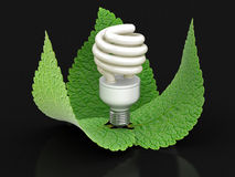 Energy Saving Light Bulb and leaves Royalty Free Stock Photo