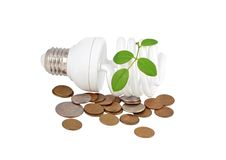 Energy saving light bulb, money and plant Stock Images