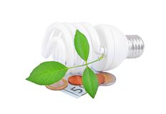Energy saving light bulb, money and plant Stock Photo