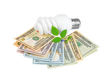 Energy saving light bulb, money and plant Stock Photography