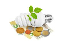 Energy saving light bulb, money and plant Royalty Free Stock Photos
