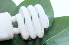 Energy Saving Light Bulb On Green Leaves Stock Images