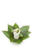 Energy Saving Light Bulb On Green Leaves Royalty Free Stock Photo