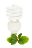 Energy Saving Light Bulb On Green Leaves Stock Image