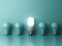 Energy saving light bulb , one glowing compact fluorescent lightbulb standing out from unlit incandescent bulbs on green. Background , individuality and Royalty Free Stock Images
