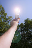 Energy saving light bulb on outside Royalty Free Stock Photography